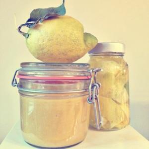 lemoncurd camilla&sverreproject